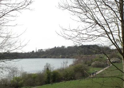 Astbury Mere Country Park Spring